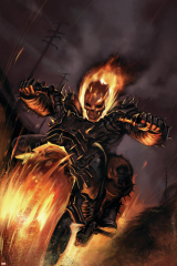 Ghost Rider No.20 Cover: Ghost Rider Fighting