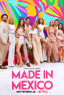Made in Mexico TV Series