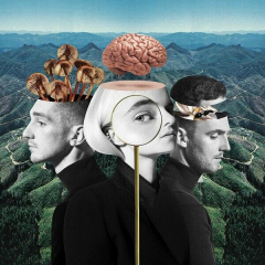 Clean Bandit What Is Love Album Cover